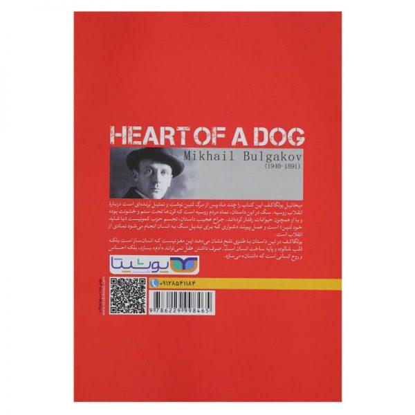 قلب سگ